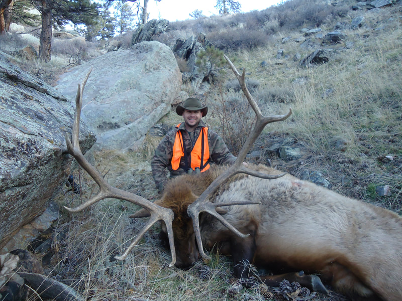Wyoming rifle elk hunts