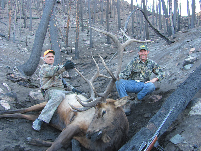elk outfitters wyoming